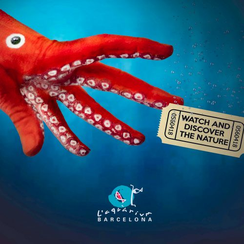 Campagne L'Aquarium de Barcelona