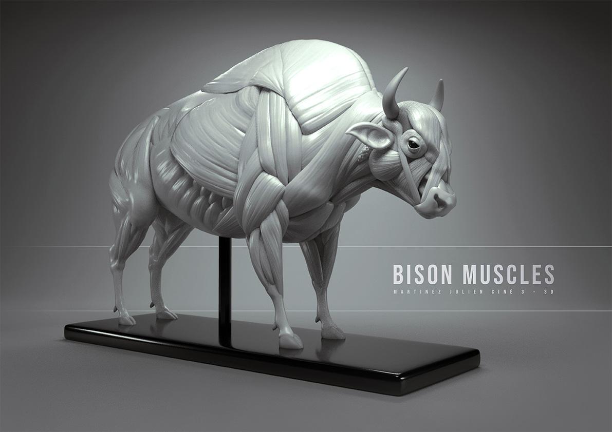 visuel-zbrush-sculpture-3d-3